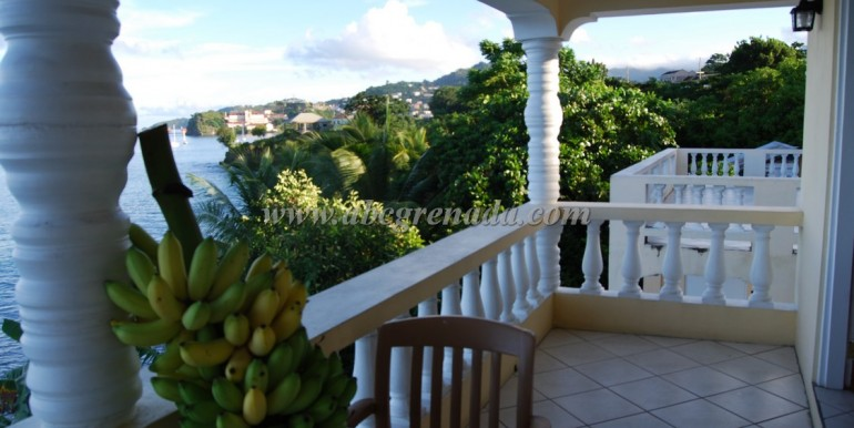 Balcony with Bananas